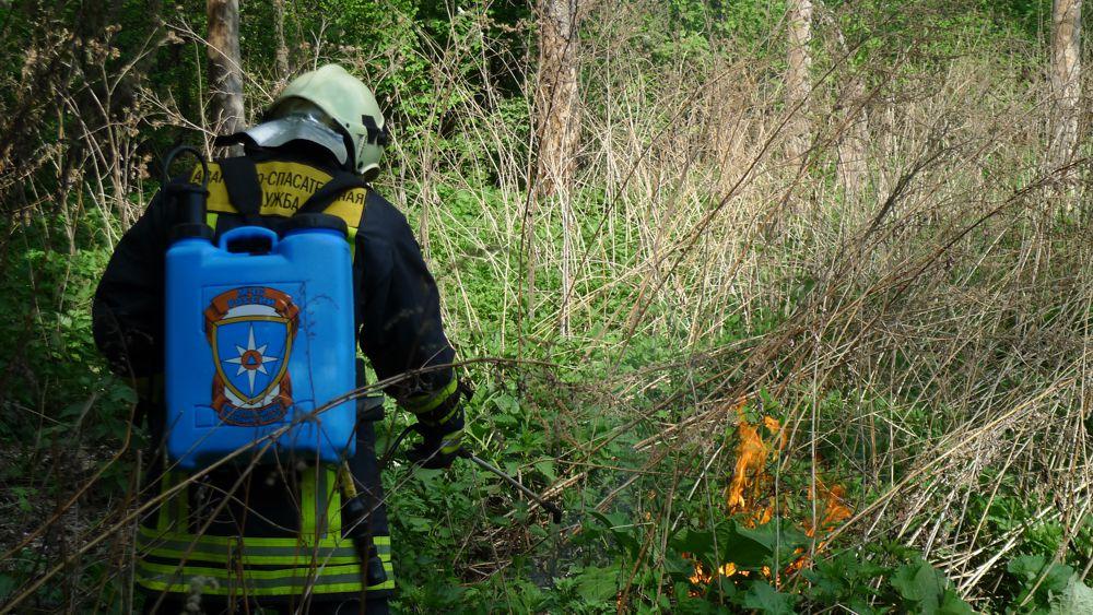 Аварийно спасательная служба АСС предостерегает любителей шашлыков от неосторожного обращения с кострами в лесу.